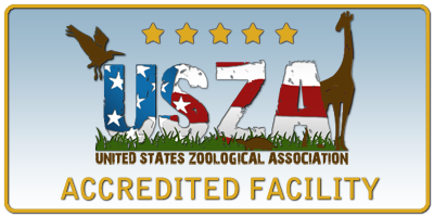 USZA Accreditation Sign